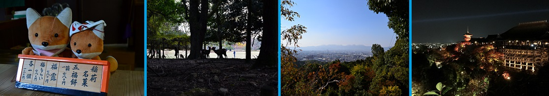 collage-november
